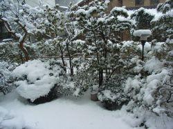 「大雪の首都圏」昔東京周辺にも天然スキー場があった