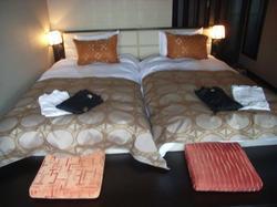 一見豪華主義、マダムは大満足の「ホテルラビスタ函館」