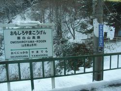 鉄道でしか行けないスキー場の話
